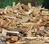 timber-sustain-thumbnail